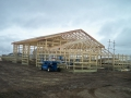 Installing the Trusses